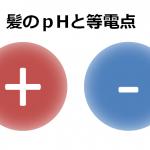 pHと等電点