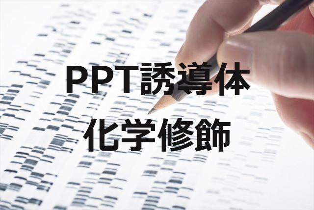 PPTの化学修飾