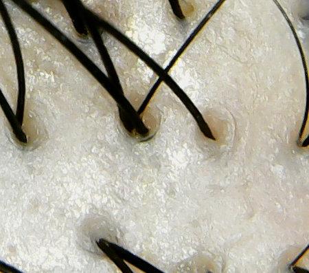 ルベルナチュラルヘアソープホホバ頭皮